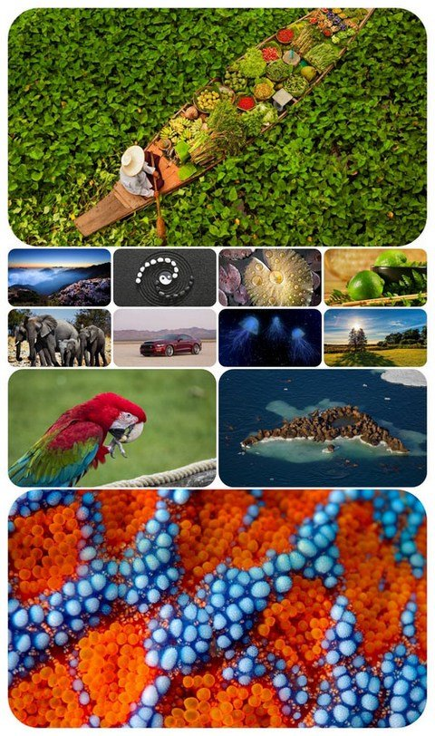 Beautiful Mixed Wallpapers Pack 417