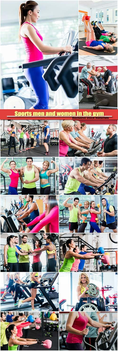 Sports men and women in the gym