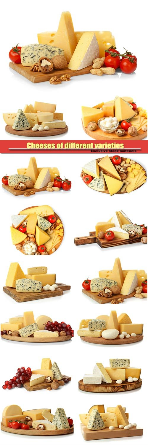 Cheeses of different varieties on a white background