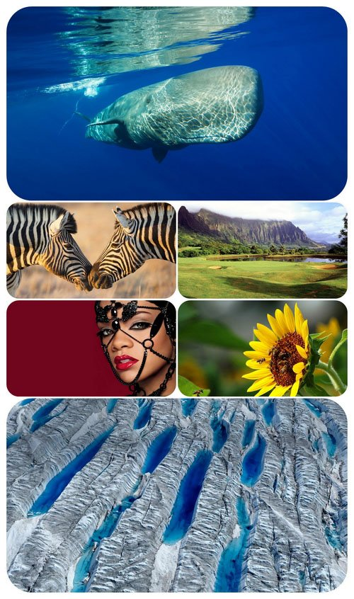 Beautiful Mixed Wallpapers Pack 425