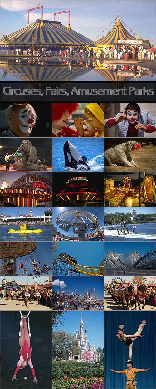 Circuses, Fairs & Amusement Parks