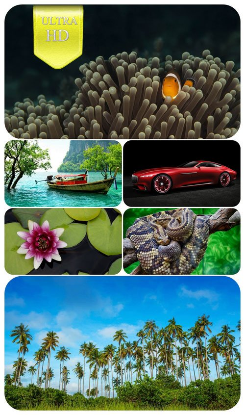 Ultra HD 3840x2160 Wallpaper Pack 119