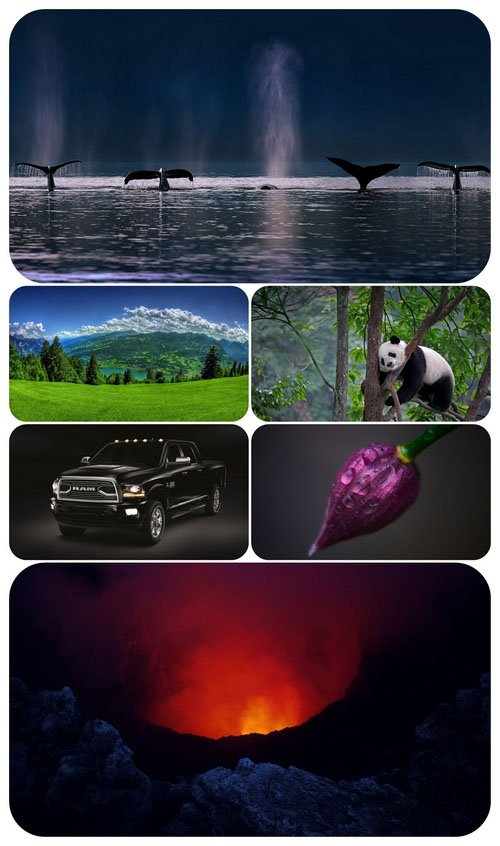 Beautiful Mixed Wallpapers Pack 457