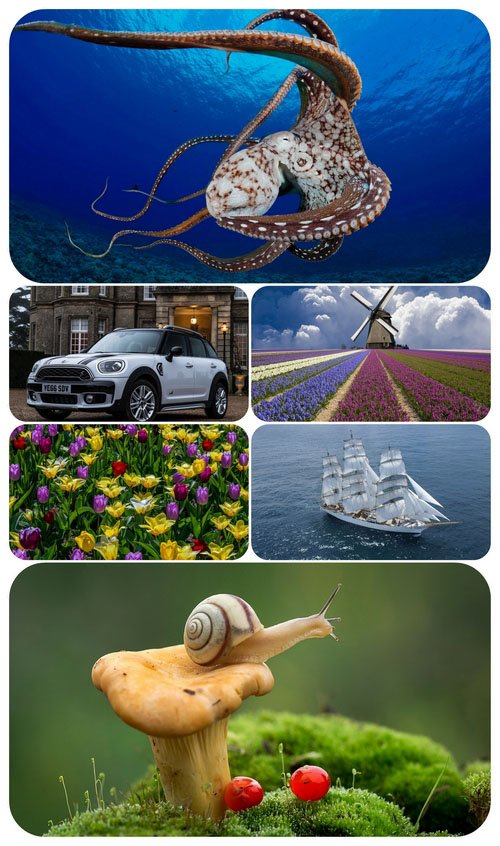 Beautiful Mixed Wallpapers Pack 461