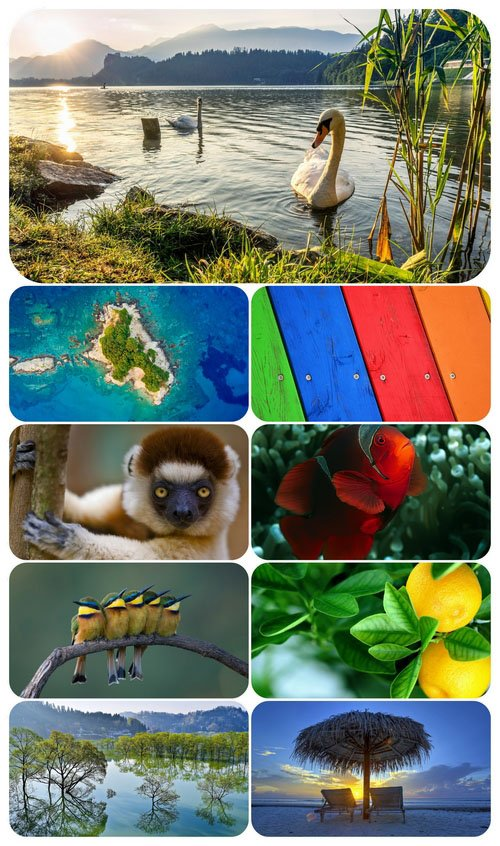Beautiful Mixed Wallpapers Pack 467