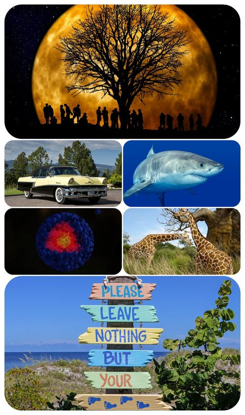 Beautiful Mixed Wallpapers Pack 483