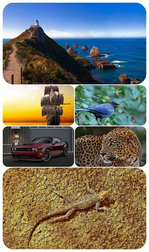 Beautiful Mixed Wallpapers Pack 486