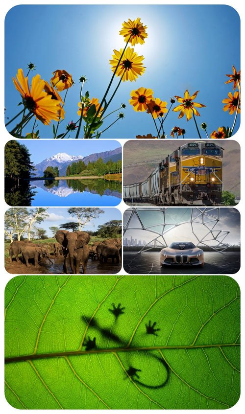 Beautiful Mixed Wallpapers Pack 487