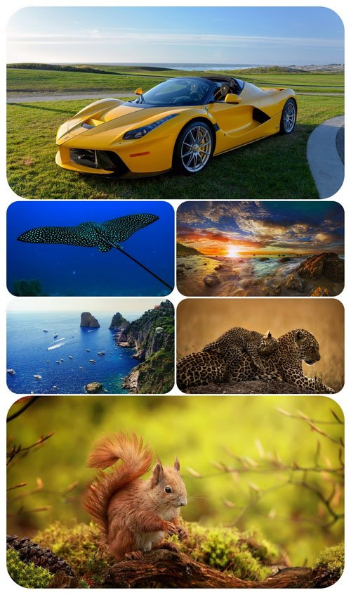 Beautiful Mixed Wallpapers Pack 488
