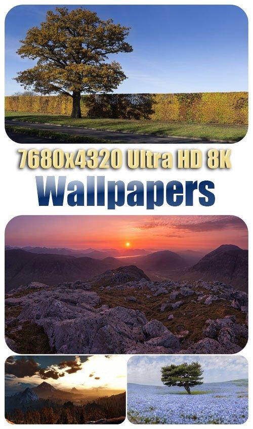 7680x4320 Ultra HD 8K Wallpapers 57