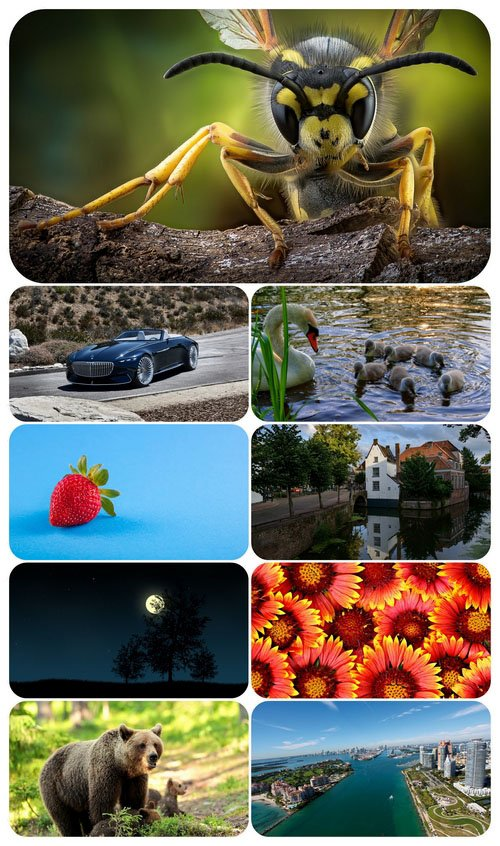 Beautiful Mixed Wallpapers Pack 493