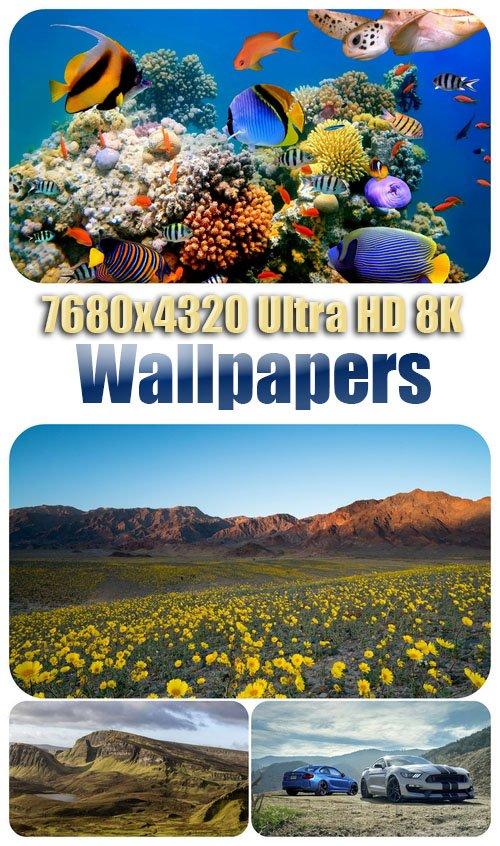 7680x4320 Ultra HD 8K Wallpapers 58