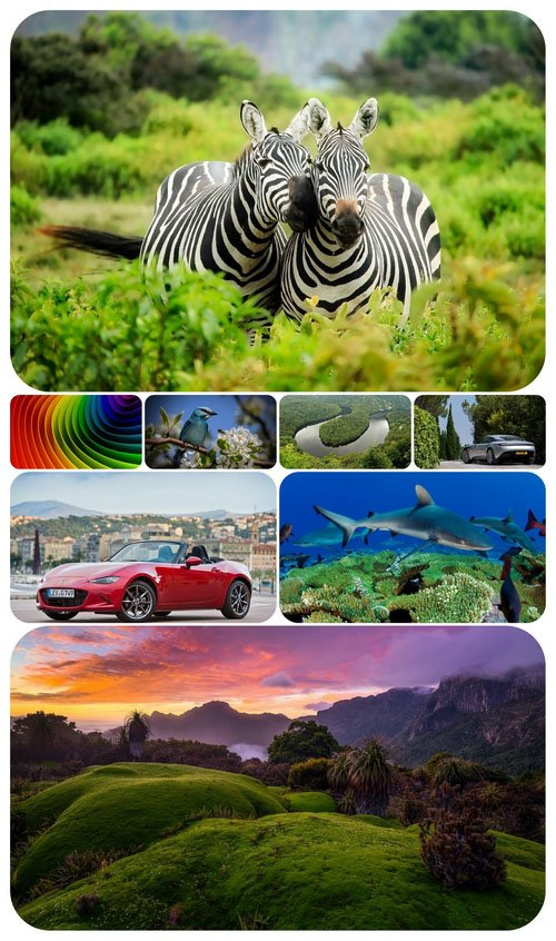 Beautiful Mixed Wallpapers Pack 498