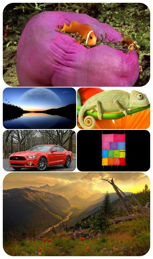 Beautiful Mixed Wallpapers Pack 500