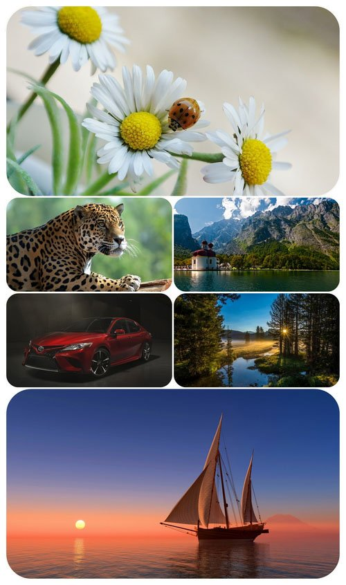Beautiful Mixed Wallpapers Pack 505