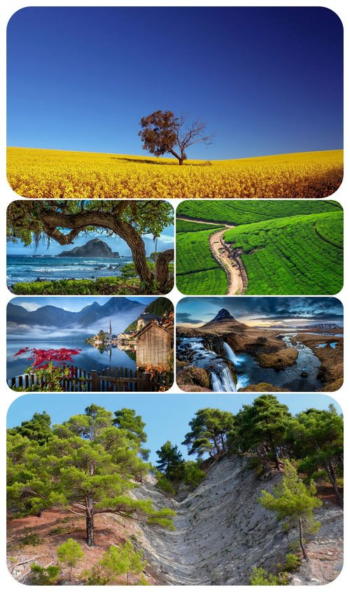 Most Wanted Nature Widescreen Wallpapers #303