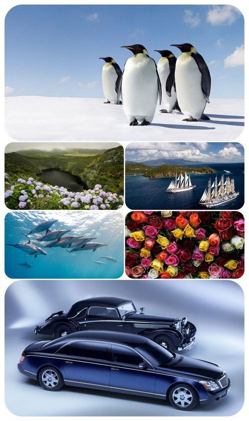 Beautiful Mixed Wallpapers Pack 511