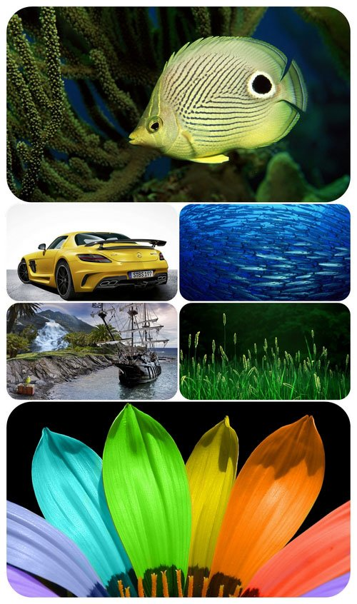 Beautiful Mixed Wallpapers Pack 515