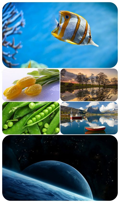 Beautiful Mixed Wallpapers Pack 520