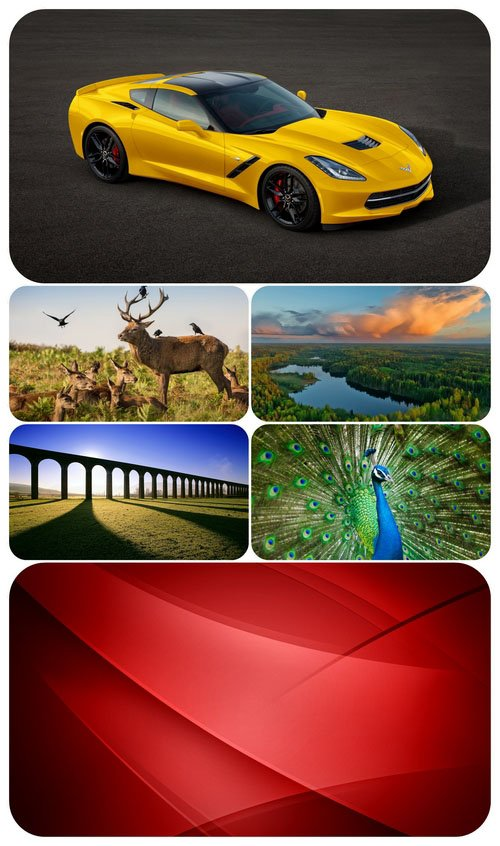 Beautiful Mixed Wallpapers Pack 528