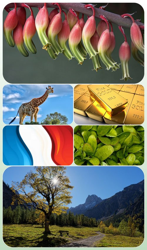 Beautiful Mixed Wallpapers Pack 532