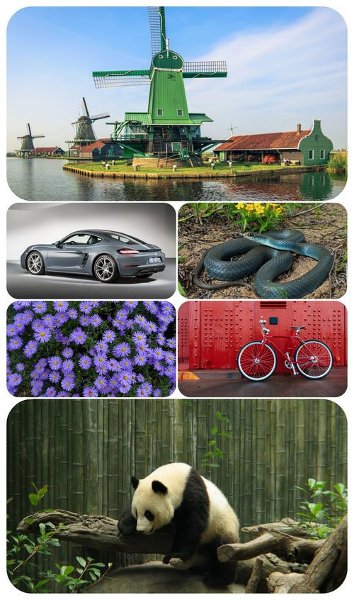 Beautiful Mixed Wallpapers Pack 534
