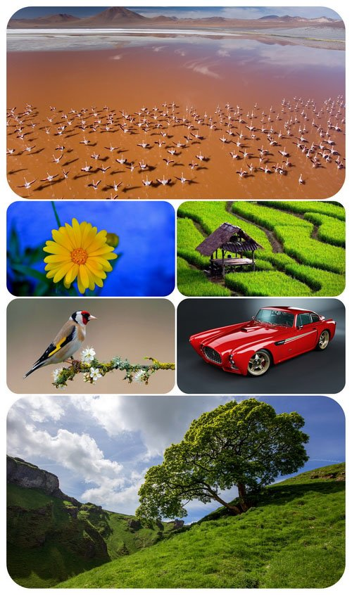 Beautiful Mixed Wallpapers Pack 536