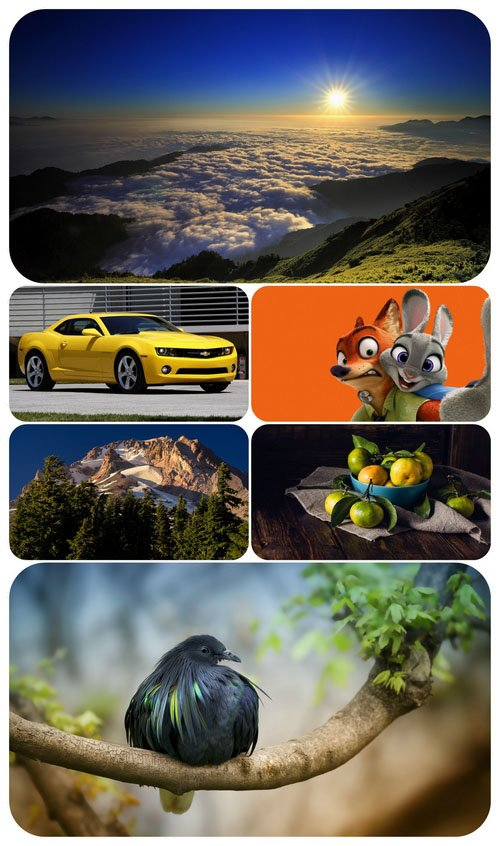 Beautiful Mixed Wallpapers Pack 538