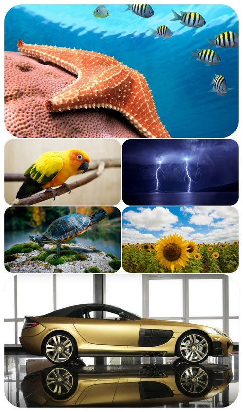 Beautiful Mixed Wallpapers Pack 540
