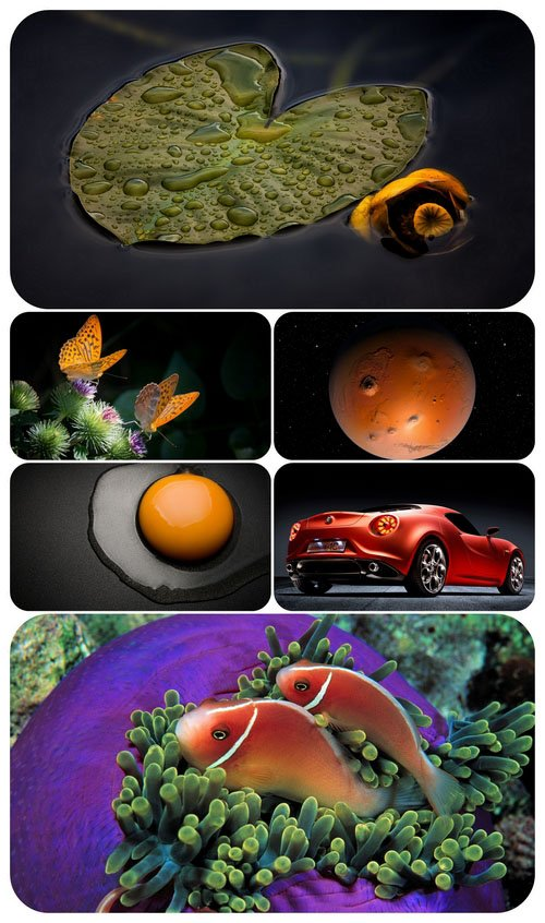 Beautiful Mixed Wallpapers Pack 545