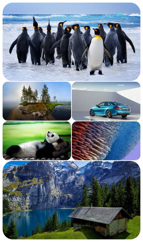 Beautiful Mixed Wallpapers Pack 546
