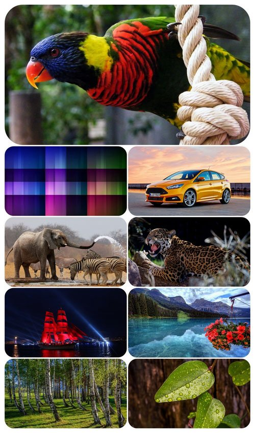 Beautiful Mixed Wallpapers Pack 558