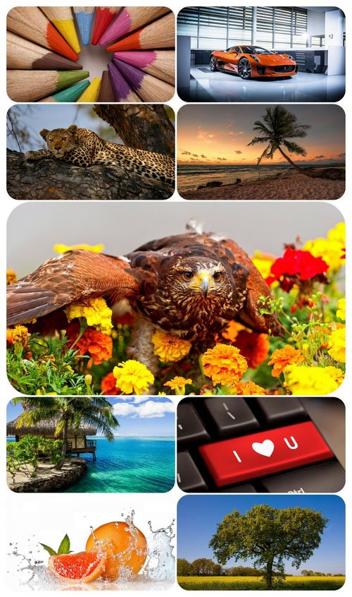 Beautiful Mixed Wallpapers Pack 563