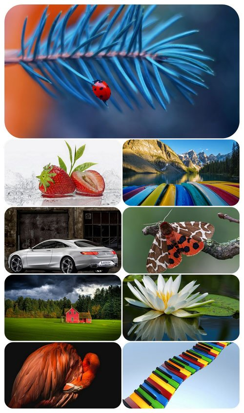 Beautiful Mixed Wallpapers Pack 572