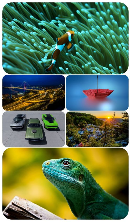Beautiful Mixed Wallpapers Pack 585