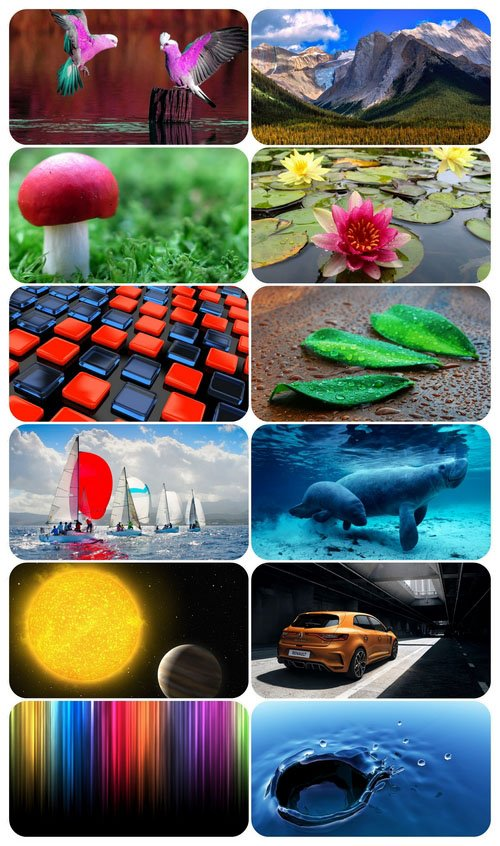 Beautiful Mixed Wallpapers Pack 592