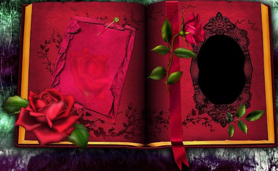 Онлайн рамка - В красной книге