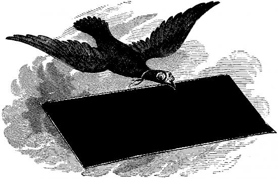 Вставить фото в рамку - Птица счастья