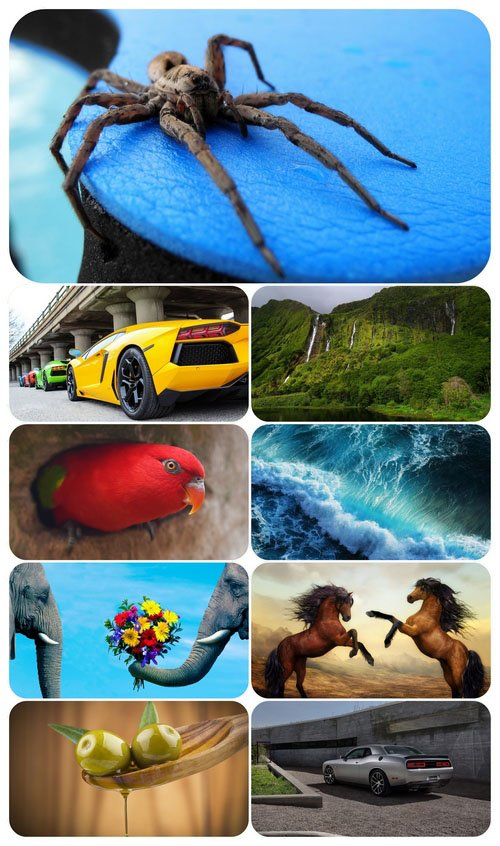 Beautiful Mixed Wallpapers Pack 610