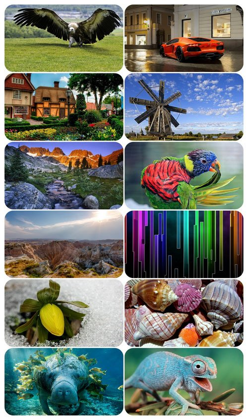 Beautiful Mixed Wallpapers Pack 640