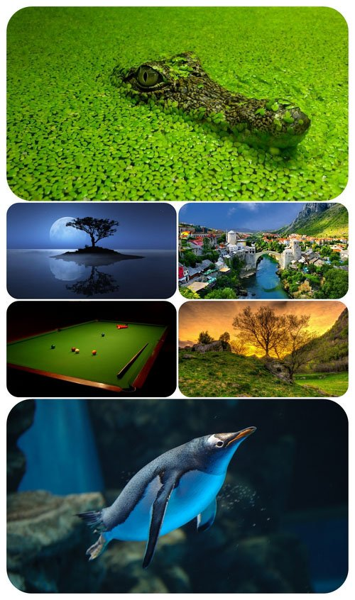 Beautiful Mixed Wallpapers Pack 645