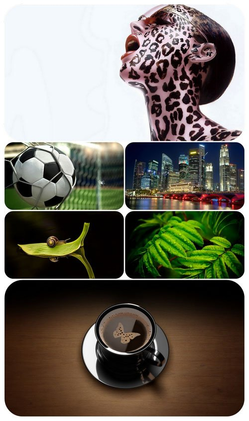 Beautiful Mixed Wallpapers Pack 650