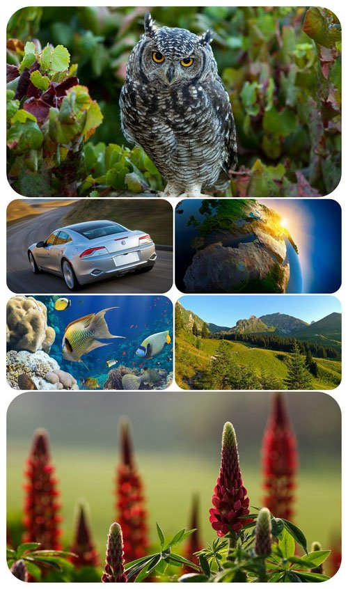 Beautiful Mixed Wallpapers Pack 654