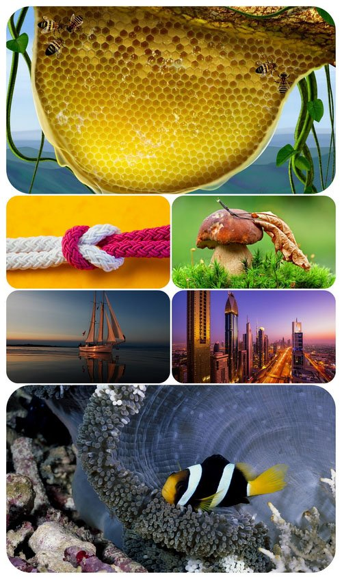 Beautiful Mixed Wallpapers Pack 655