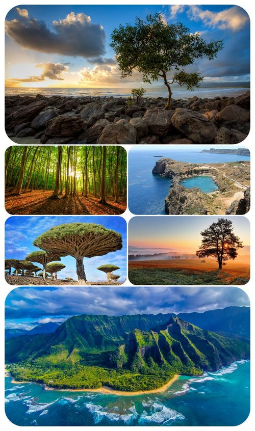 Most Wanted Nature Widescreen Wallpapers #416