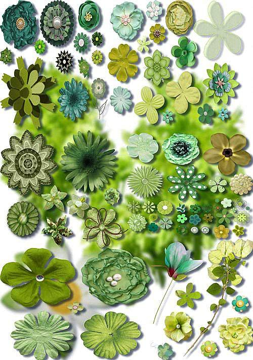 Коллекция Png клипартов - Зеленые цветы