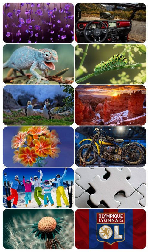 Beautiful Mixed Wallpapers Pack 684