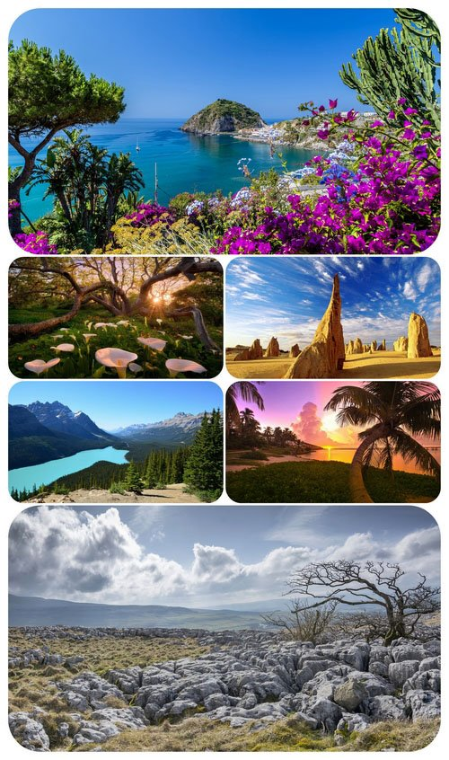 Most Wanted Nature Widescreen Wallpapers #440