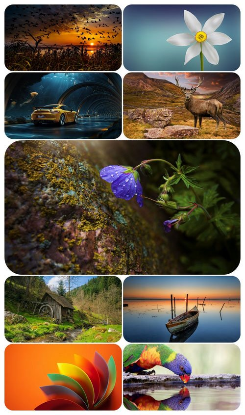 Beautiful Mixed Wallpapers Pack 701