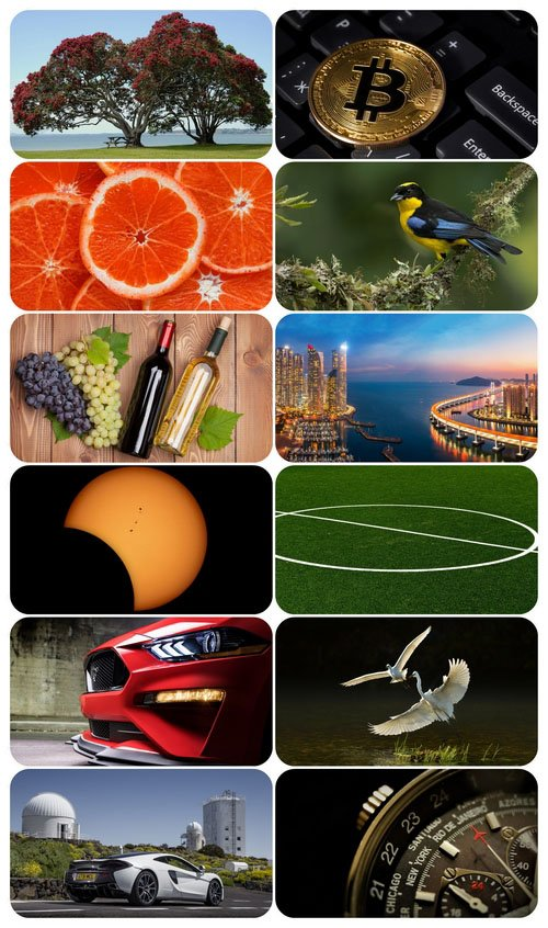 Beautiful Mixed Wallpapers Pack 710